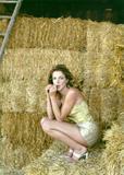 Claudia Gerini Filmography Foto 62 (������� ������� ������������ ���� 62)